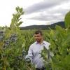 Image Rishi R. Burlakoti